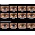 Контактные линзы Freshlook Colors 2 шт от Alcon купить, отзывы