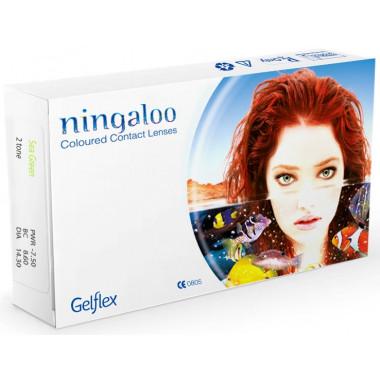 Контактные линзы Ningaloo 2 шт от Gelflex купить, отзывы